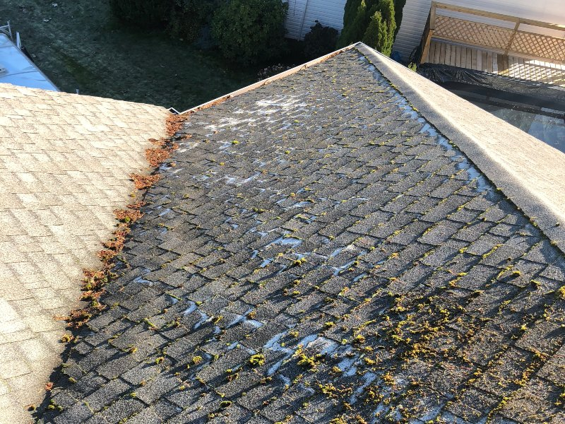 roof washing with incredible results