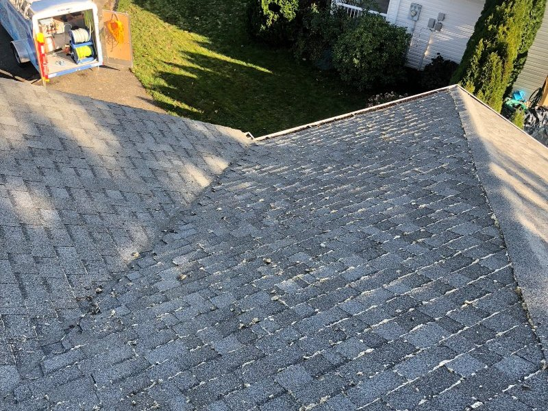 fresh looking roof after cleaning
