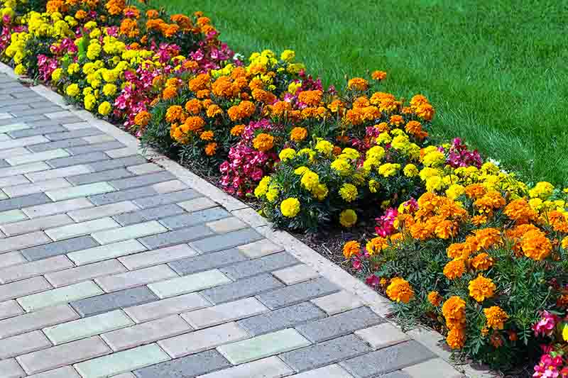 A walkway with paver stones along a flower bed.
